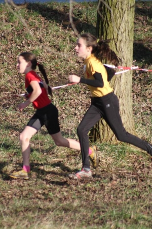 3e Rijnmond Cross 24-01-2015